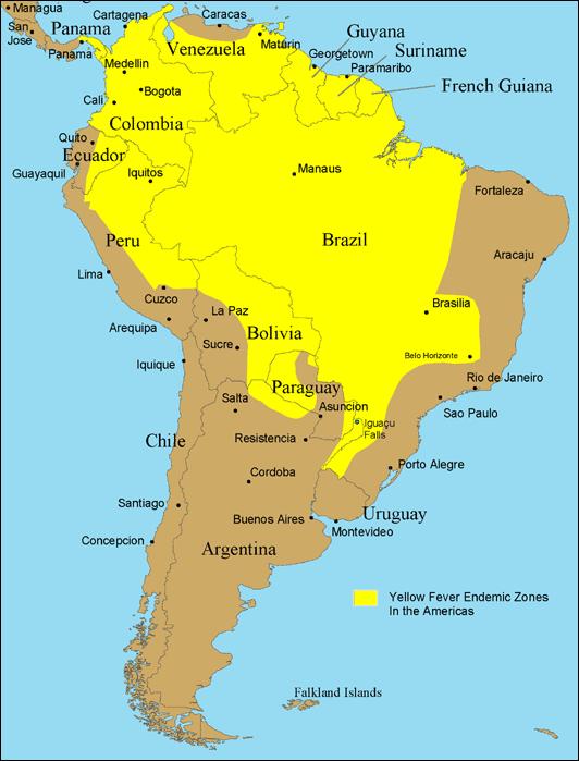Mapa da região com incidência de febre amarela na América do Sul